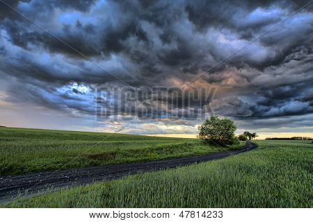 Poland Nysa dark clouds over the field poster