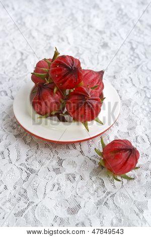 Rosele flower