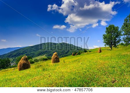More Mountain Stack Of Hay With Trees
