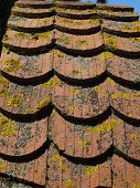 background red old roof tiles covered with moss and lichen poster