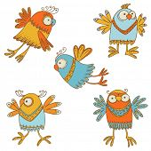 Cute Birds - for design, baby scrapbook - in vector poster