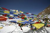 Tibetan praying flags floating on the Thorong-la pass at 5416m poster