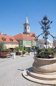 the Market place of Rust at Lake Neusiedl,Burgenland,Austria poster
