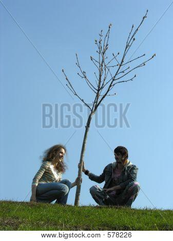 Couple. Spring. Tree