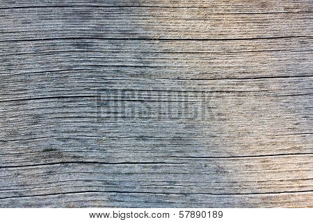 Texture Wood Pannels On Wall Background