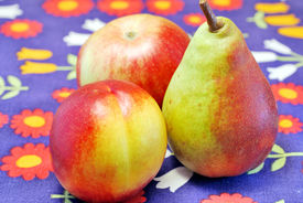 Nectarine, Apple And Pear