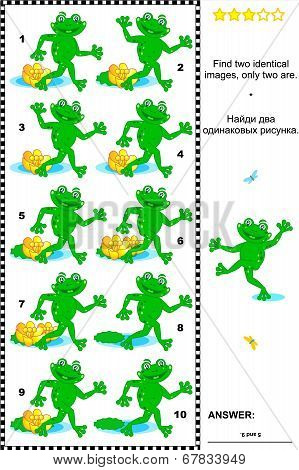 Visual puzzle: Find two identical images of playful frogs. Answer included. poster