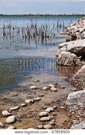 Quite Shoreline Of Local Lake
