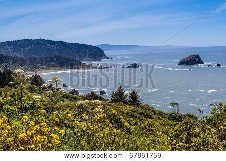 California Coast North Of Klamath