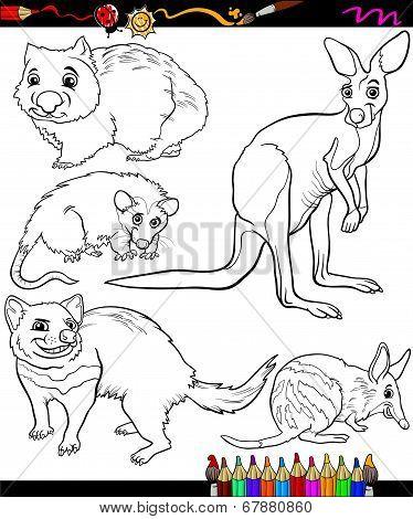 Animals Set Cartoon Coloring Book