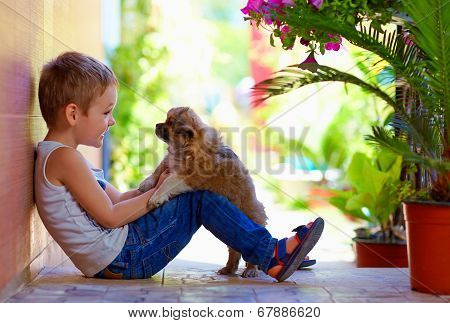 Excited Boy Playing With Beloved Puppy