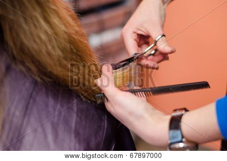 Hands Of Professional Hair Stylist Cut Blonde Hair