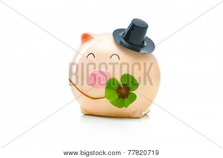 Four-leafed clover and piggybank isolated on white