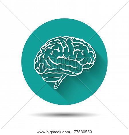 Human brain vector icon flat illustraton with shadow
