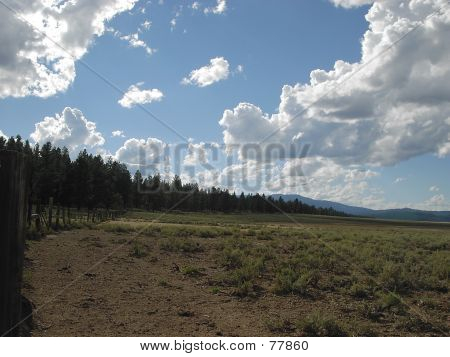 California Ranchland