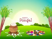 South Indian harvesting festival, Happy Pongal celebrations with sugarcane, rice in traditional mud pot and religious offerings for worship in morning view. poster