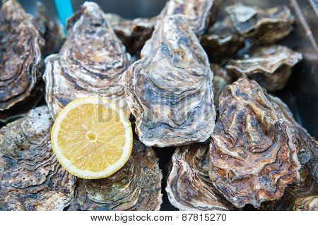 Lemon And Oysters