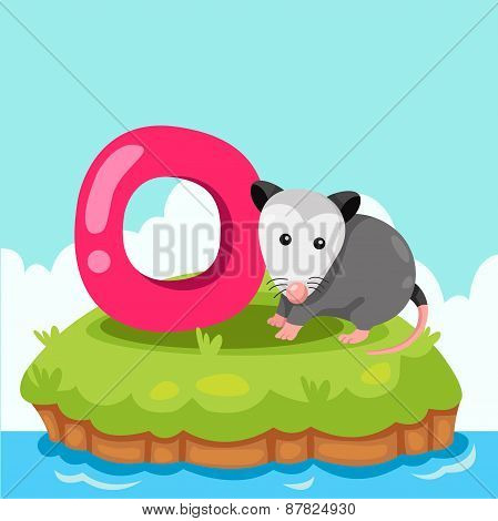Illustrator of Letter 'O is for Opossum'