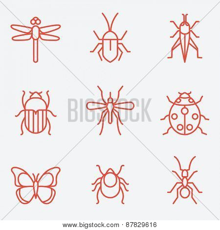 Insect icon set, thin line style, flat design