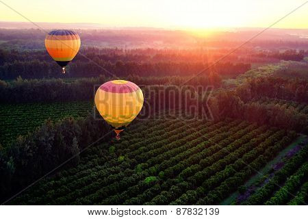 Hot Air Balloons Over Countryside.