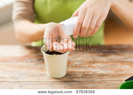people, gardening, seeding and profession concept - close up of woman pouring seeds from paper bag to hand