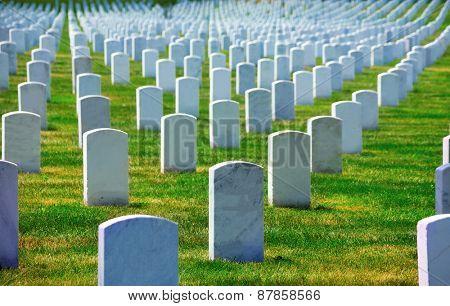 Arlington National Cemetery Virginia VA near Washington DC United States poster