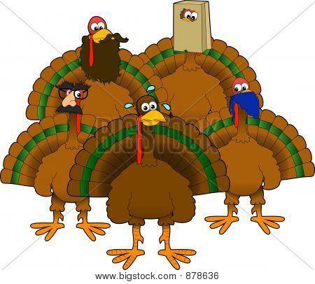 Disguised_Turkeys