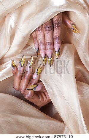 beautiful long designer nails , nails for exhibitions, french manicure