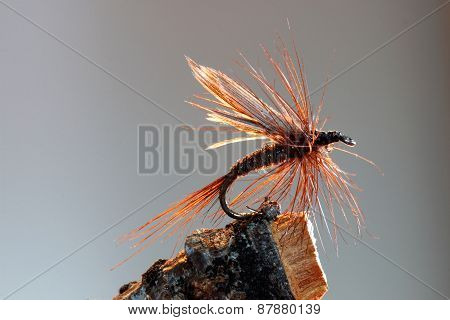 Brown hackle fly fishing lure