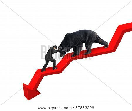 Businessman Against Bear On Arrow Downward Trend Line White Background