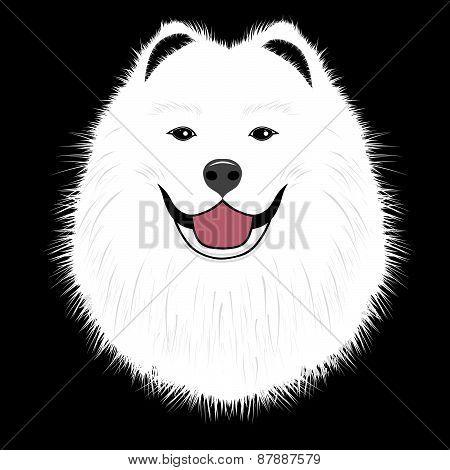 Dog Samoyed, Buddy Puppy Vector