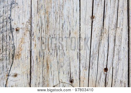 Wooden texture close up photo , nice background or texture for your projects