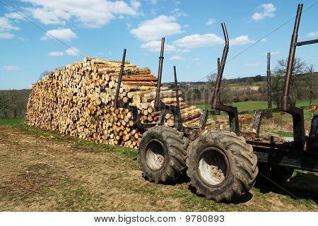 Renewable Resources Logging Industry
