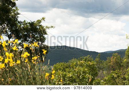 View Of Monteleone Sabino In The Lazio