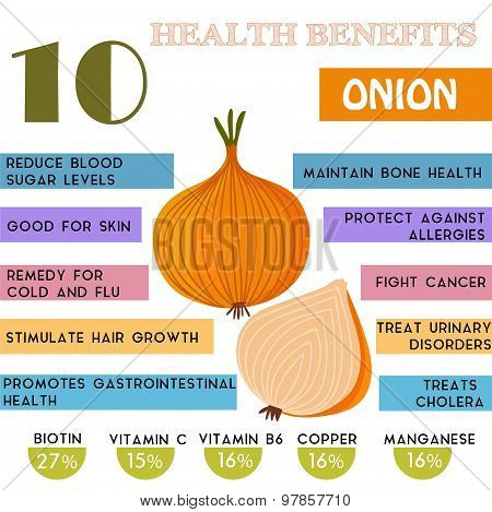 10 Health benefits information of Onion. Nutrients infographic vector illustration. - stock vector poster