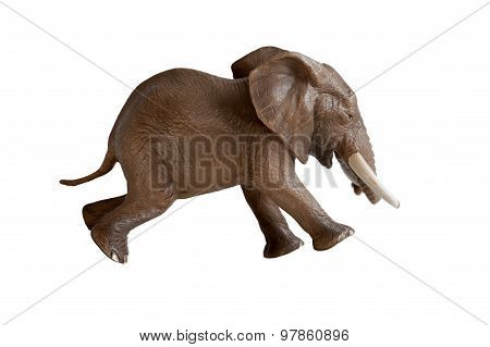 Elephant Running Isolated