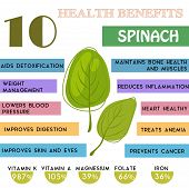 10 Health benefits information of Spinach. Nutrients infographic vector illustration. - stock vector poster