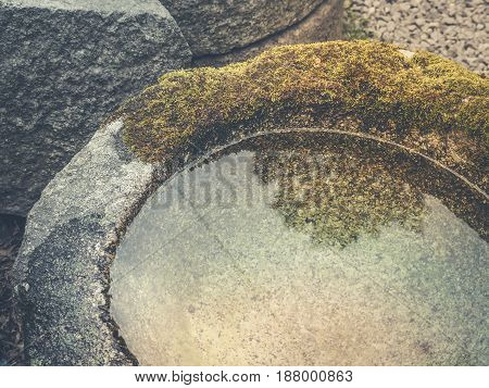 Vintage filter color, Moss covered stone, Close up image
