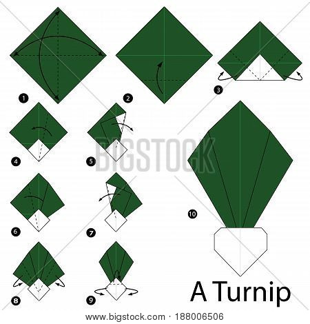 Step by step instructions how to make origami A Turnip.