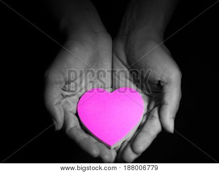 Pink heart in woman hands low key picture style dark and black background. love concept.