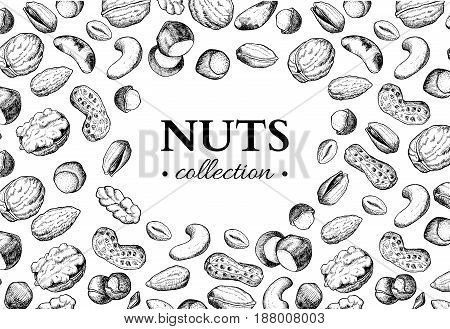 Nuts vector vintage frame illustration. Hand drawn engraved food objects. Great for label, banner, flyer, card, business promote.