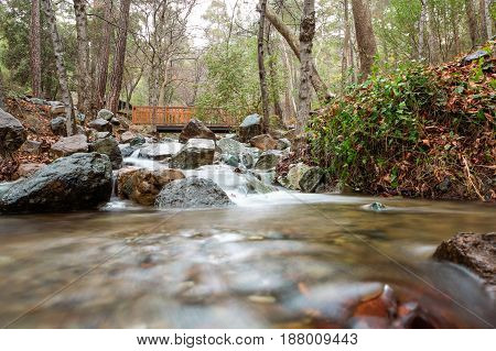 Peaceful Beautiful Scenic Stream In The Mountains