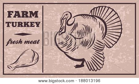 Label of meat products.Turkey. Poultry meat. Vector illustration