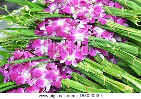 Bouquets of purple and white orchid flowers stacked on display at flower market in Bangkok Thailand