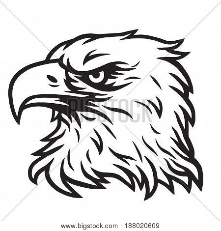 Eagle Head Mascot Drawing Black and White