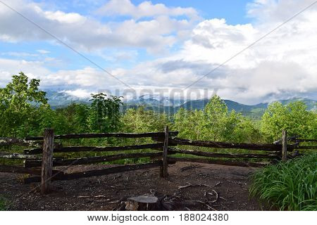 Tsali mountain area view with green trees Almond NC