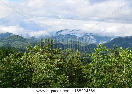 Tsali mountain area with low clouds and trees