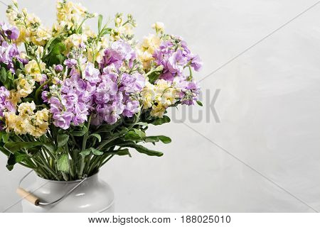 Bouquet of lilac and lemon color flowers Matthiol in grey water can.