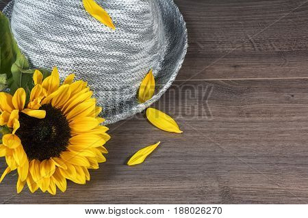 Grey hat and one sunflower with petals on the brown wooden background