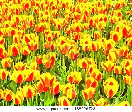 Watercolor pattern flowerbed bright red with yellow tulips. Vibrant illustration graphic background wallpaper. Stylized fabulous decorative backdrop.